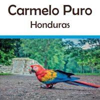 Honduras Carmelo Puro