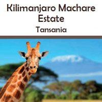 Tansania Kilimanjaro Machare Estate